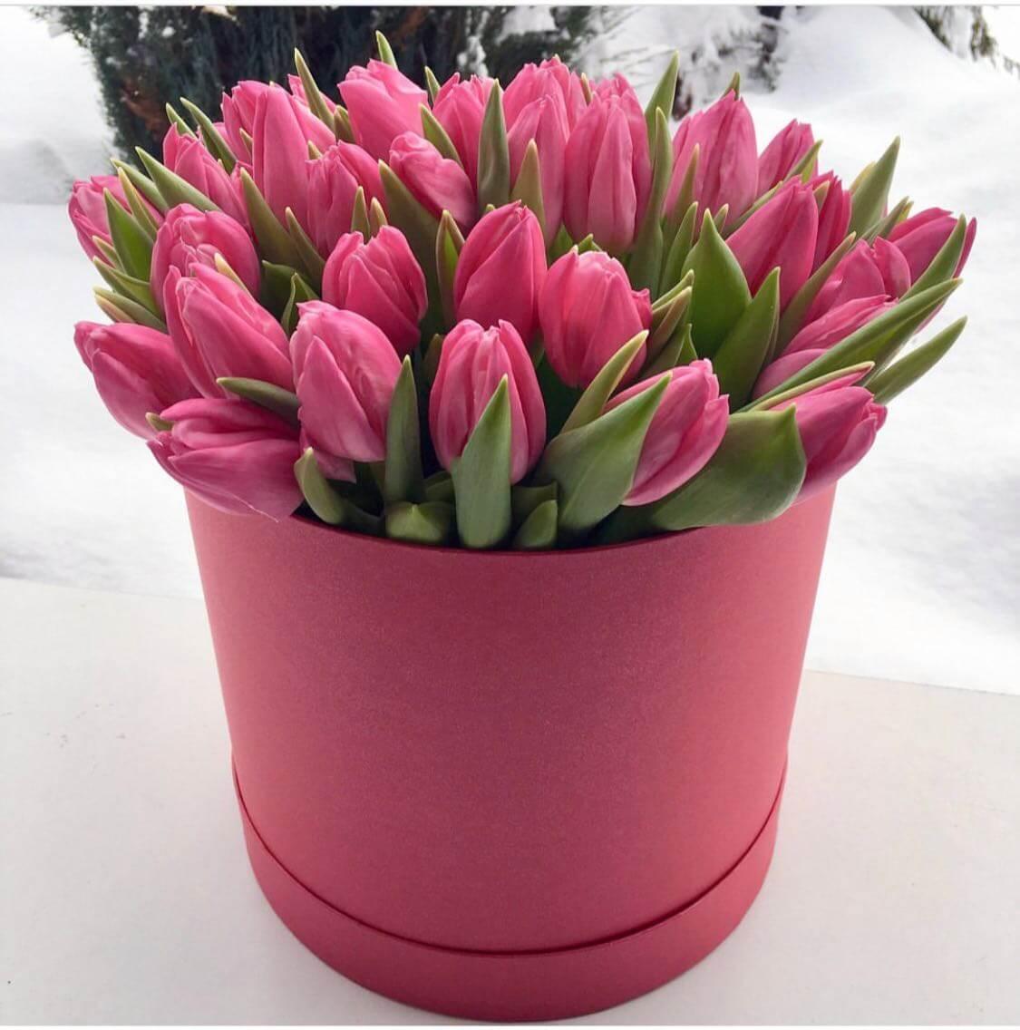 Темно-розовые тюльпаны в коробке