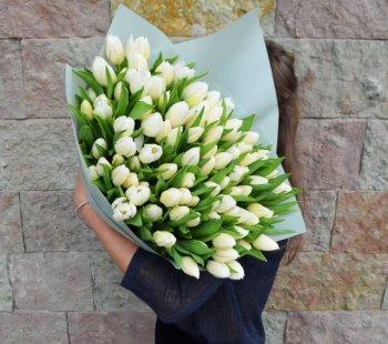 151 белый тюльпан