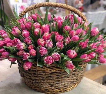 Корзина с малиновыми тюльпанами